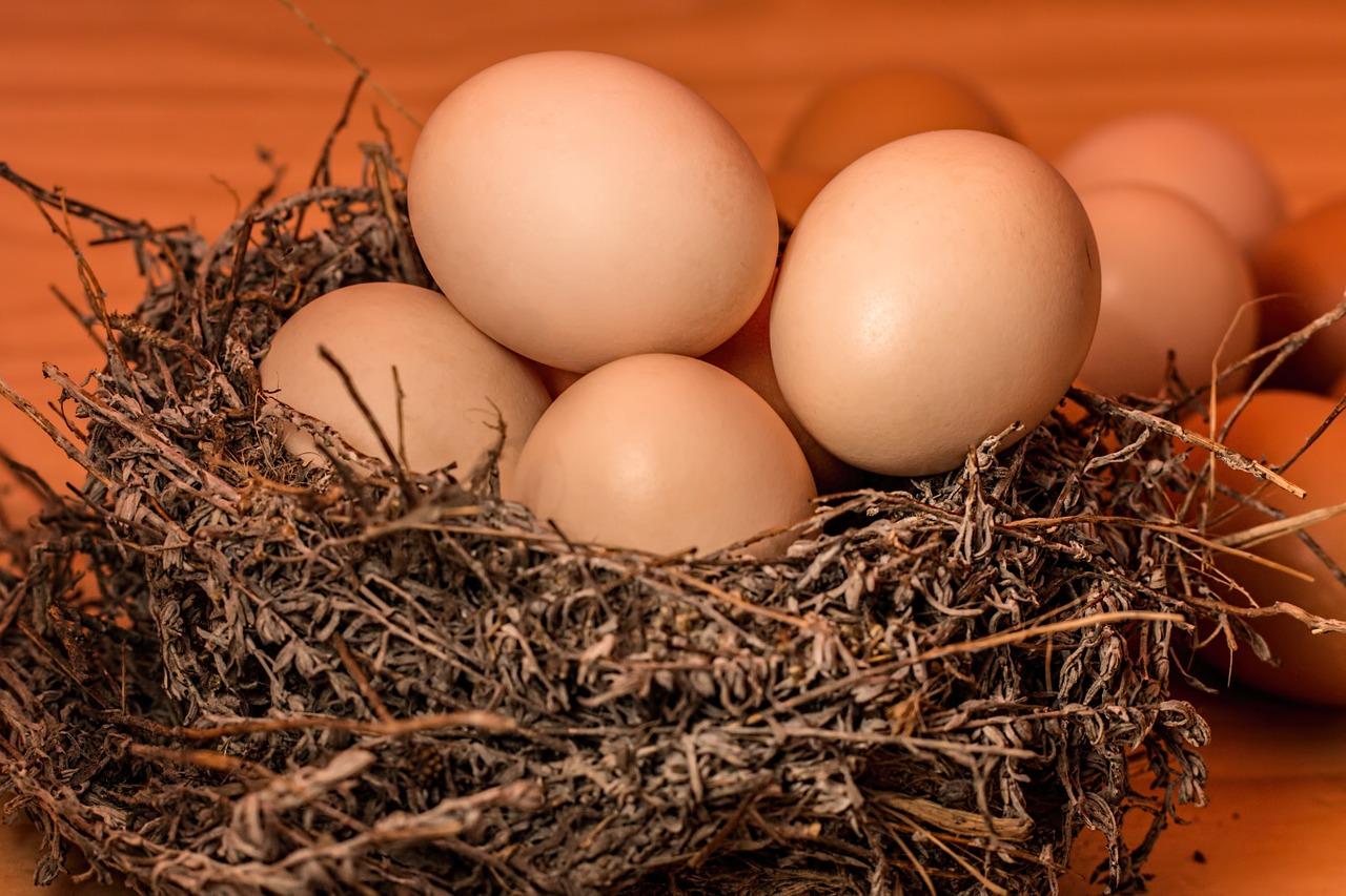 mimpi dapat telur
