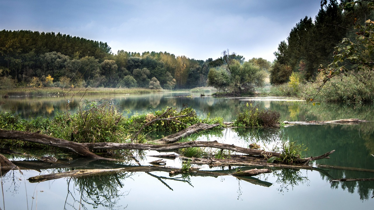 mimpi sungai kotor