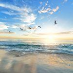 mimpi pantai pasang